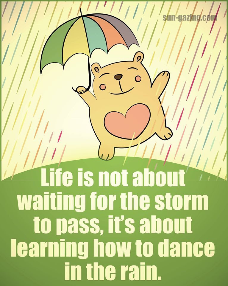 Life Is Not About Waiting For The Storm To Pass It Is About Learning