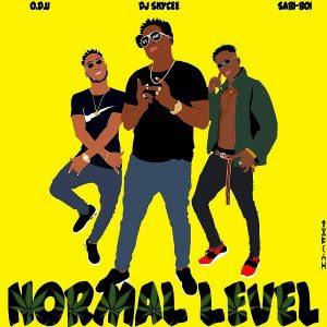 Download Music Mp3:- Dj Skycee X Sabi Boi X ODU – Normal Level