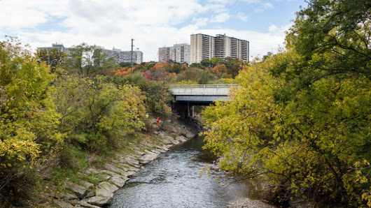 Tory plans 'super park' for Don River Valley - CityNews