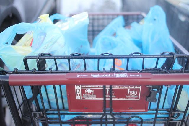 ditl grocery buggy.JPG