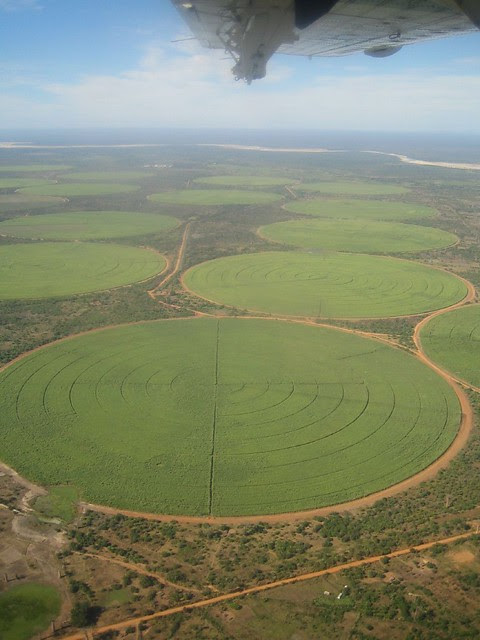 Irrigated Crops Circular Crops Irrigated By Long