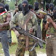 US intelligence officials examining video of Nigerien militant group