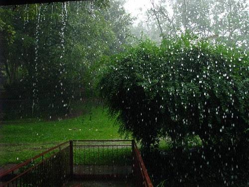 estética da chuva 1