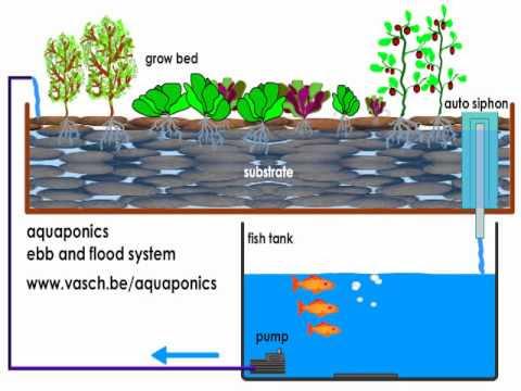 Bangladesh Announces Nationwide Use of SERVIR Satellite-based Flood