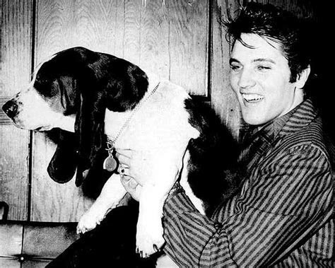 Pets Owned by Elvis and Priscilla Presley at Graceland