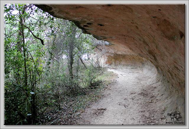 3 Cuevas de Pinedo