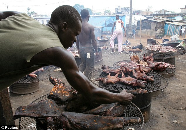 It's probably NOT chicken: Bush meat for sale in the Ivory Coast