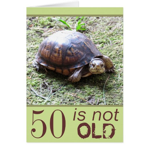 Turtle - Not Old - Birthday Greeting Card