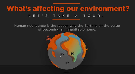What's Affecting Our Environment? [Infographic]