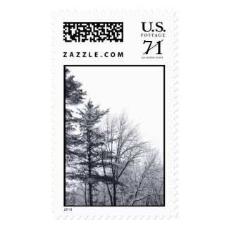 Snow-covered Trees: Vertical – Large Stamps