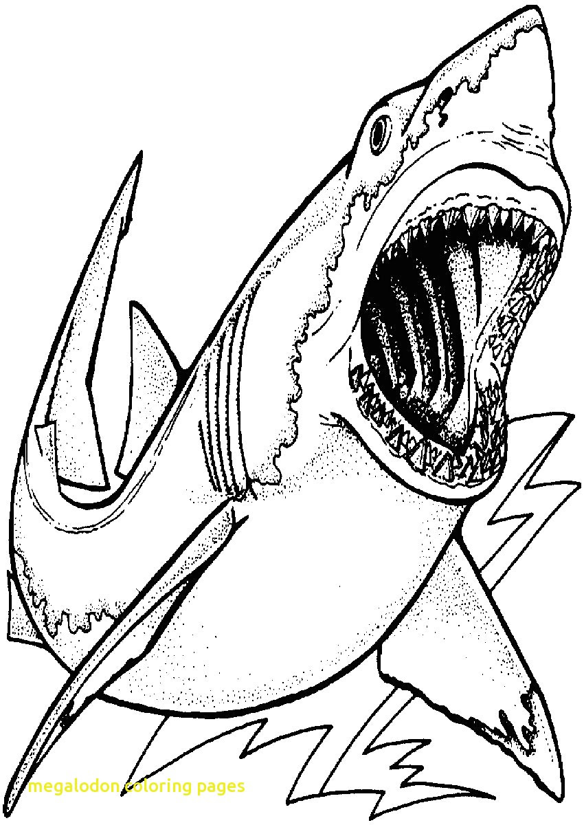 Hungry Shark World Coloring Pages at GetColorings.com ...