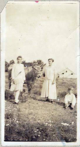Mom, girl, son, cow