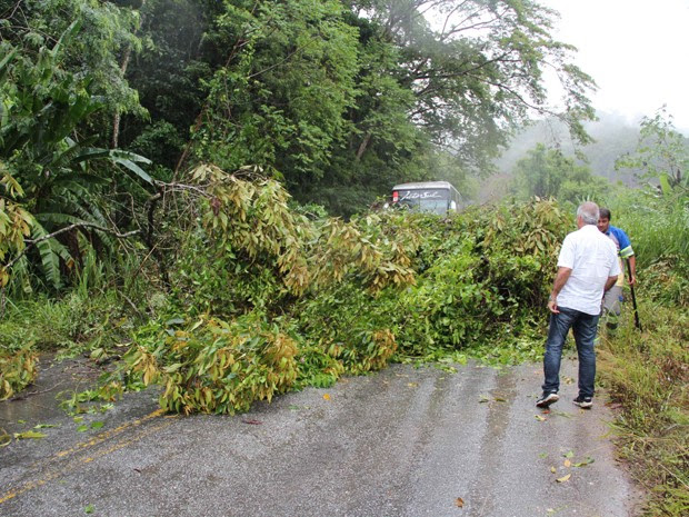Estrada bloqueada por causa de quedas de árvores e deslizamentos (Foto: Júpter Darwin Furquim/Arquivo Pessoal)