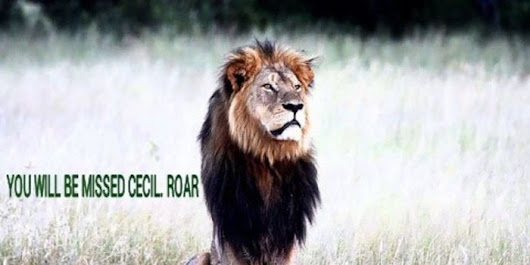 Petition: Demand Justice for Cecil the Lion, Killed in Zimbabwe!
