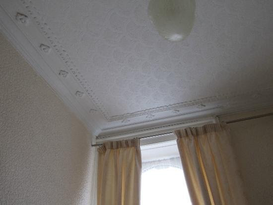 bedroom ceiling - Picture of Conference View Guest House ...