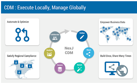 CDM Enables Cost-Effective and Agile Data Mastering | NexJ Systems