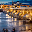 Roman Bridge (Córdoba, Spain)