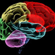 Quiz - Should You Seek Legal Help After a Brain Injury?