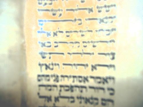 Soferet's Psychedelic Sefer Torah