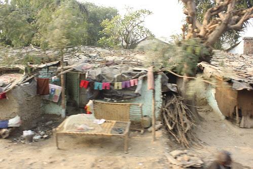 Gutur Gutur Chadh Gaya Upar Re.Khatiya Pe Junglee Kabutar Re by firoze shakir photographerno1