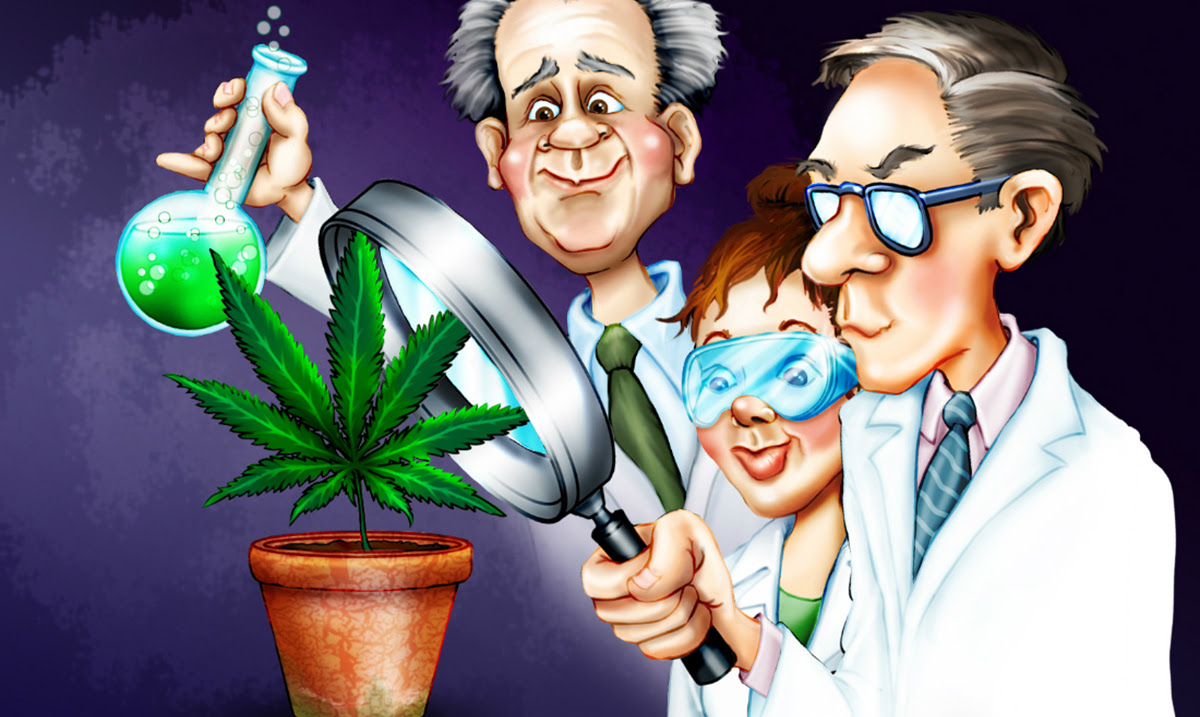 Image result for 100 peers studies shows cannabis cure cancer