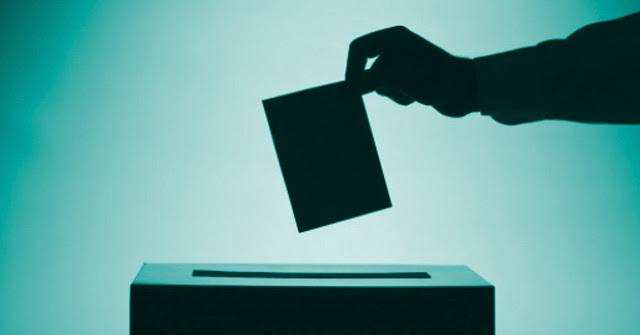 Resultat d'imatges de electoral