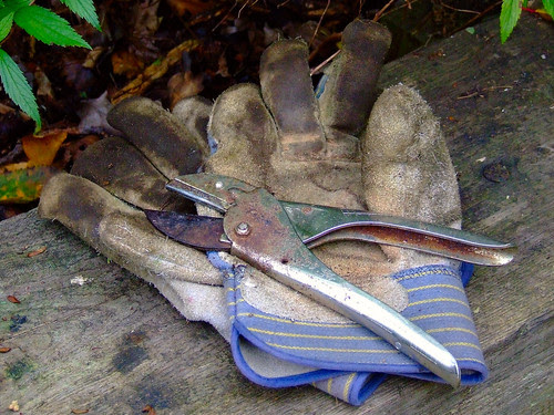 secateurs by C.K.H., on Flickr