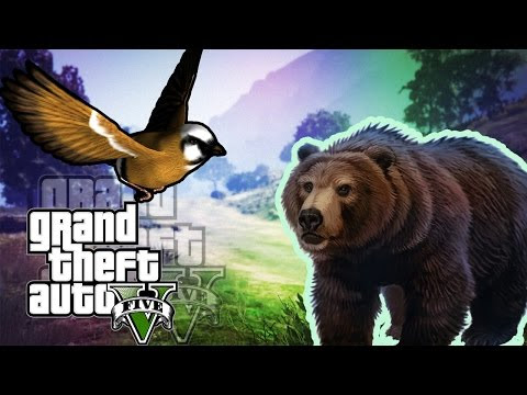 Game Play: GTA 5 gameplay PS4 EVERY Peyote Plant Location - Play as