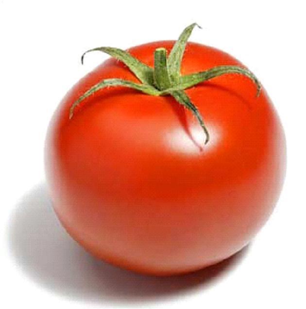 Dessin Tomate Imprimer Dernier D