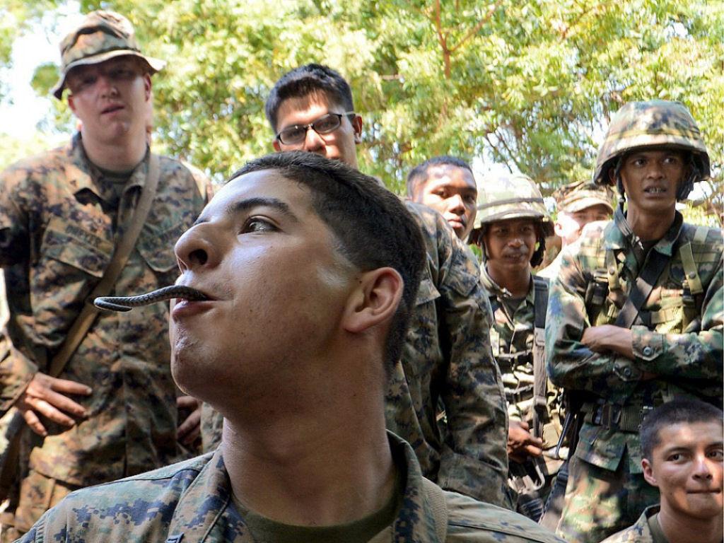 Cobra Gold 2013 - Militares sobrevivem com sangue de cobra na selva tailandesa 15