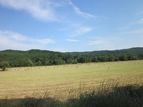 Haying, on 202 west of Birkenfeld