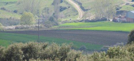 Η διαθέσιμη γη είναι το μεγαλύτερο πρόβλημα των Ευρωπαίων νέων γεωργών σήμερα