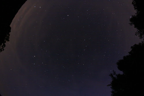 Photo de nuit - prise par Mojo Jojo