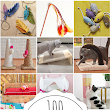 100 Cheap & Easy DIY Pet Projects - Prudent Penny Pincher