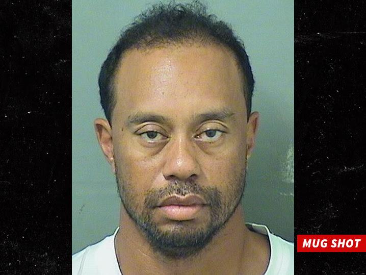 Image result for Tiger Woods Arrested For DUI in Jupiter, Florida