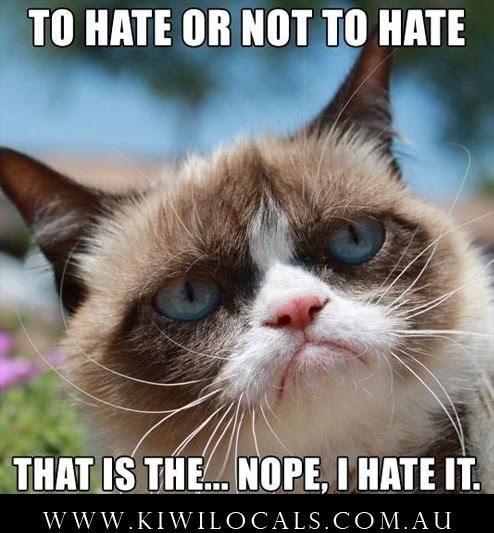 Suck It Up Grumpy Cat Meme