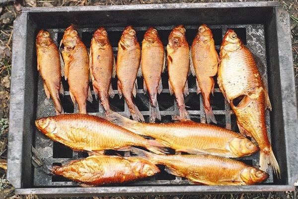 Как коптить рыбу, копченая рыба, какую рыбу коптить, как приготовить копченую рыбу, коптильня для рыбы, рецепт копчения рыбы, на чем коптить рыбу, сколько коптить рыбу, как коптить рыбу без коптильни
