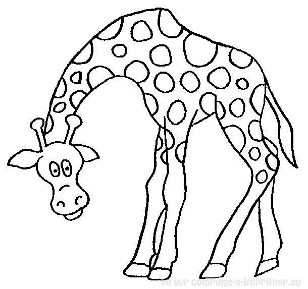 Sélection De Coloriage Girafe à Imprimer Sur Laguerchecom Page 4