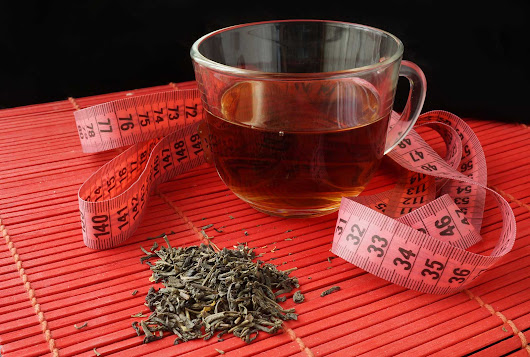 Tea Weight Loss - 5 Things You Should Know - World Tea Directory
