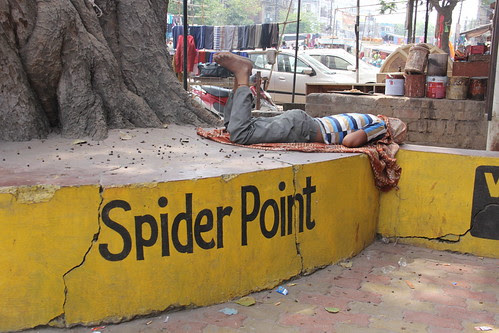 Spider Point Nakhas Lucknow by firoze shakir photographerno1
