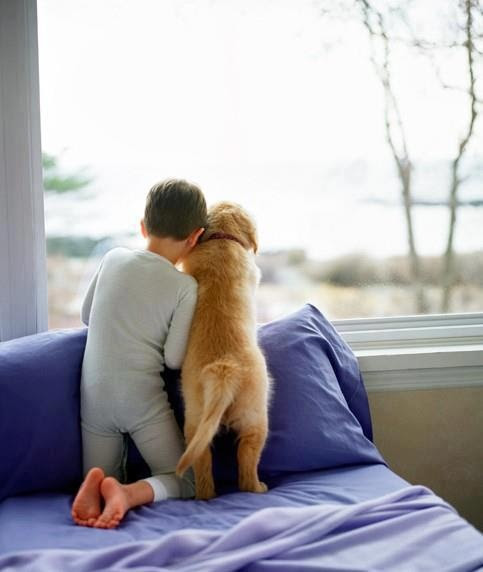 Boy and dog looking out window