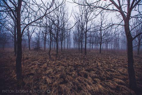CEDAR FALLS LANDSCAPE PHOTOGRAPHY   FOG