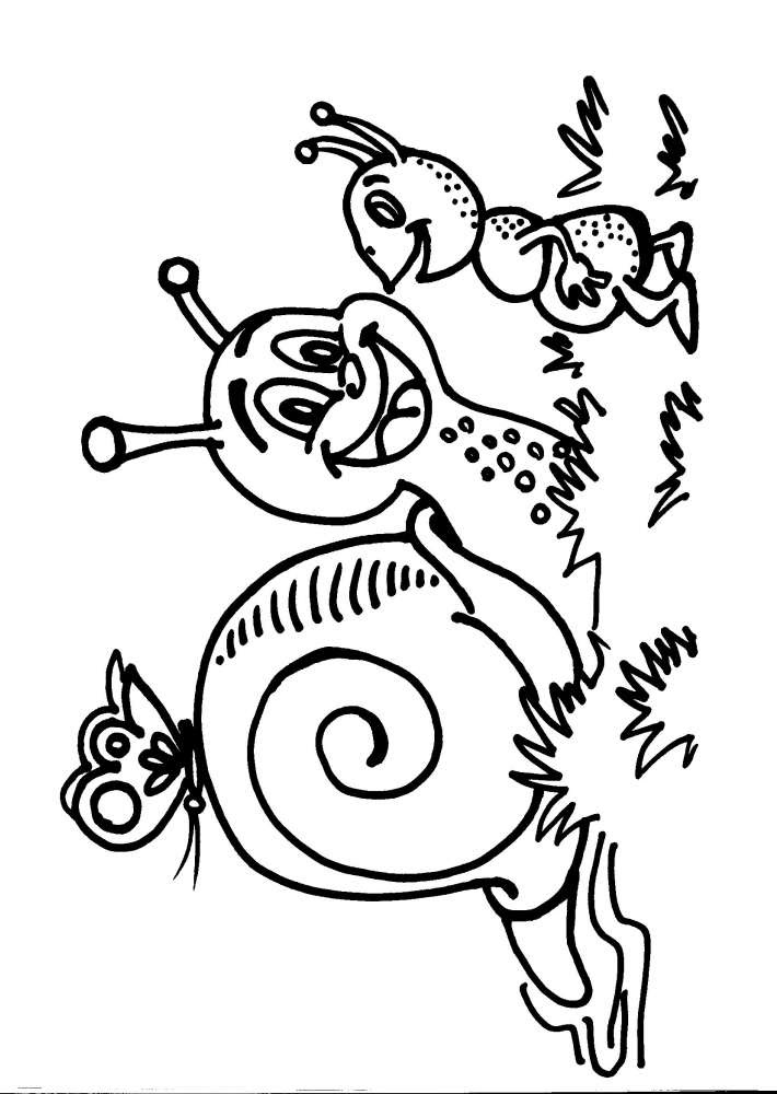 Disegni Da Colorare Per Bambinilumaca Lumachinadisegno Lumaca