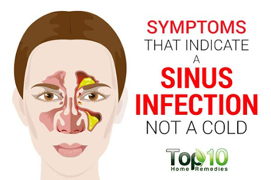 Symptoms that Indicate a Sinus Infection not a Cold | Top 10 Home Remedies