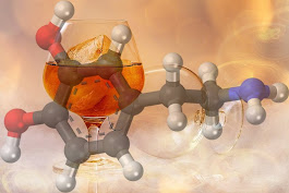 People with Family History of Alcoholism Release More Dopamine in Expectation of Alcohol