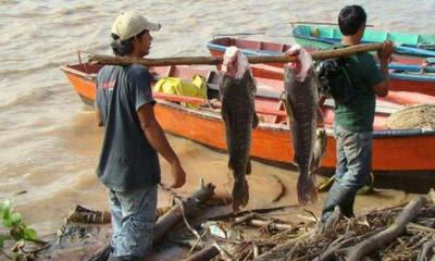 Resultado de imagen para Veda pesquera en noviembre concepcion