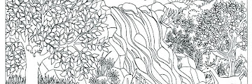 Free Printable Coloring Pages Nature