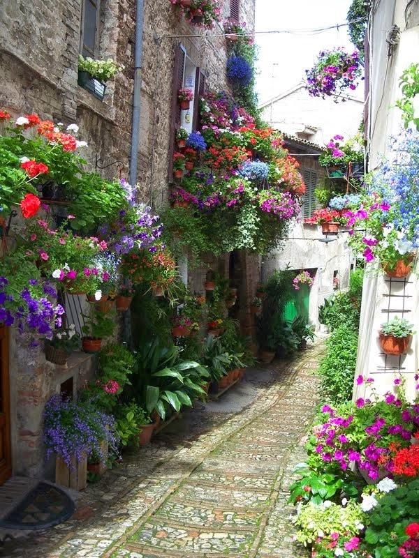 Flowered Lane, Spello, Italy