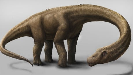 Dreadnoughtus may be the biggest dinosaur ever