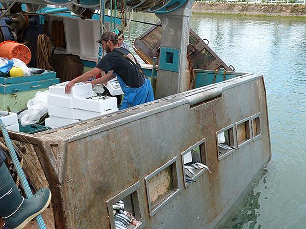 bateau et maquereaux